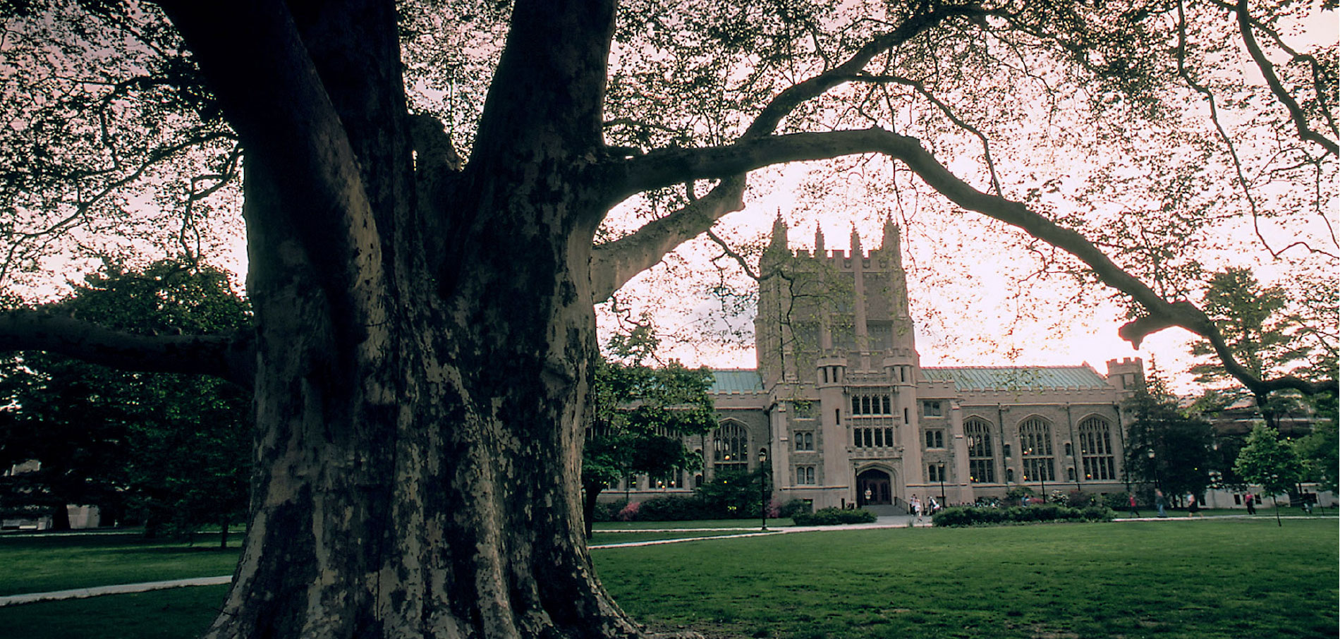 Photo of the Vassar College campus